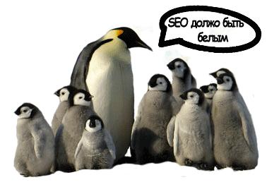 продвижение под пингвином белыми методами